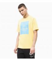 Camiseta Calvin Klein Billboard
