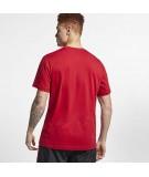Camiseta Air Jordan Nike Poolside