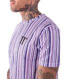Camiseta 11º Degrees Vertical Colour